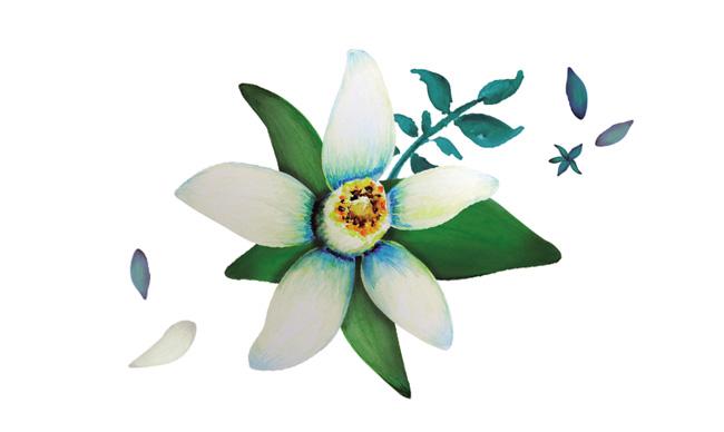 Aromas de Andalucía  Azahar