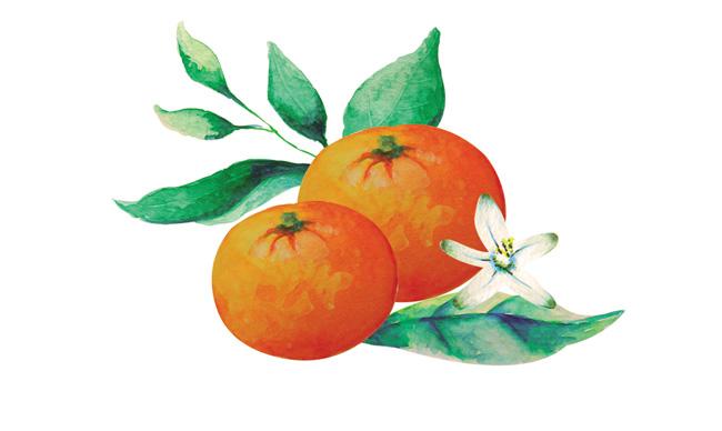 Aromas de Andalucía brisa cíttrica